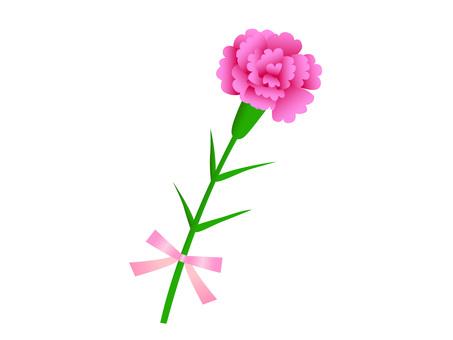 카네이션 1 개 핑크