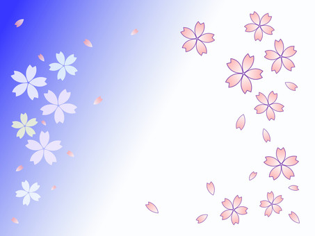 Cherry petal blue and white background