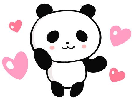하트 팬더