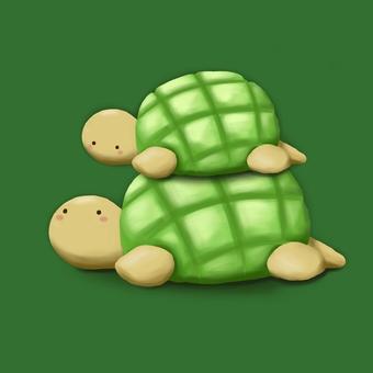 Melon bread turtle parent and child