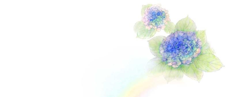 【Handwriting】 hydrangea and rainbow (for header)