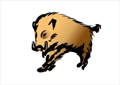 Wild boar 01