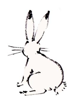 """""""Rabbit material"""""""