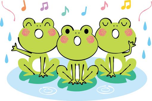 Frog's chorus rainy season rainy day rainy day