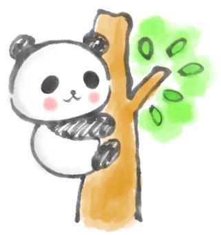 Tree climbing panda 2