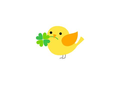 三葉草和小鳥8