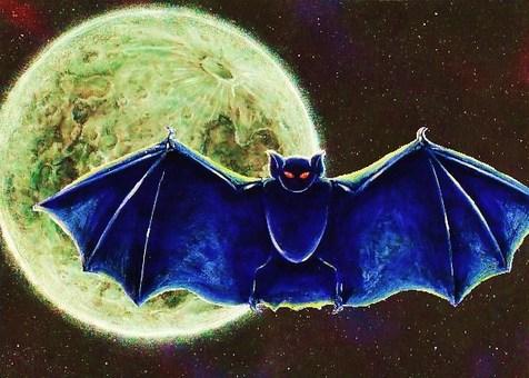 蝙蝠和月亮5