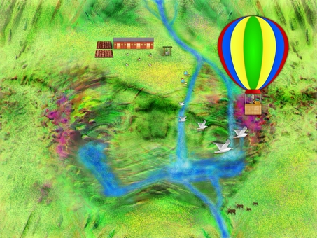 Balloon view N1016
