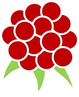 Raspberry 02
