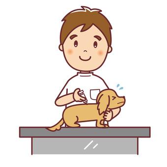 男性獣医さんと注射をされる犬