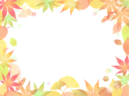 Colored leaves Ginkgo background - 12