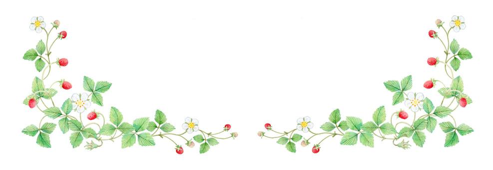 Wild strawberry decorations ★ 0024-W