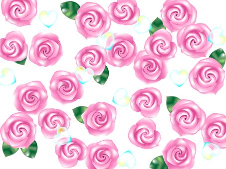 Pink rose · · ·