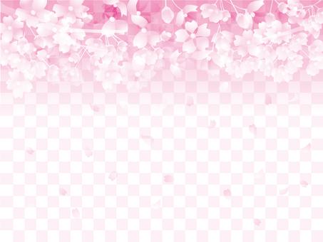 벚꽃 모양 3-2-3
