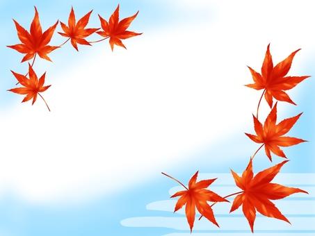 Momiji leaves, water surface