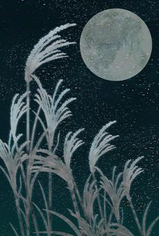 Moonlight Background Illustration ②
