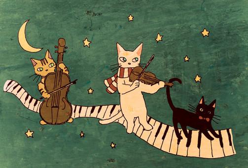 고양이의 음악대