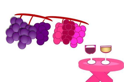 포도와 와인