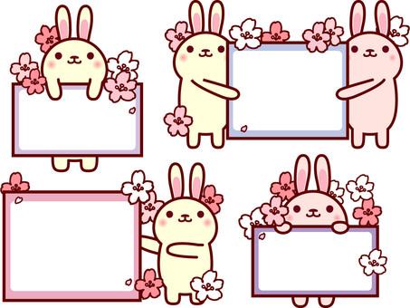 토끼 프레임 벚꽃 만개