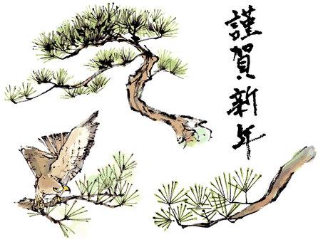 "Hawk in pine ""Handwritten material"""