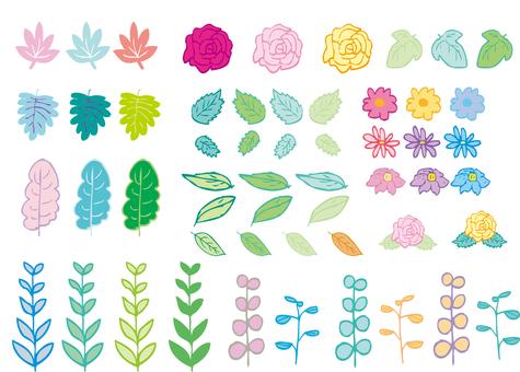 Flower plant 001