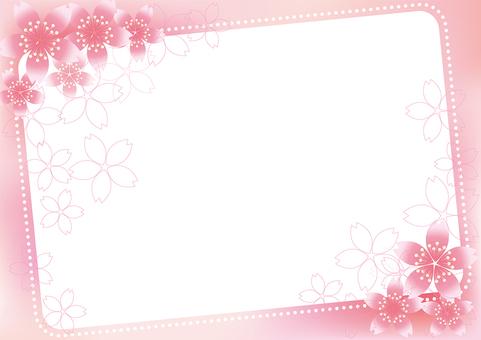 Sakura Sakura & Board 27