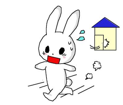 兔子現在出去了