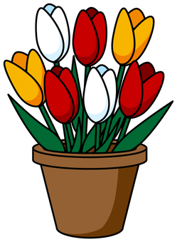 Potted tulip _ 01