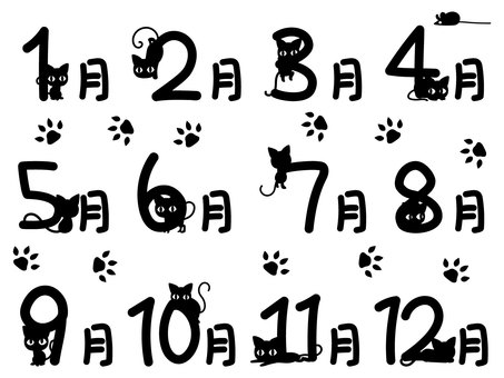 검은 고양이 씨의 12 개월