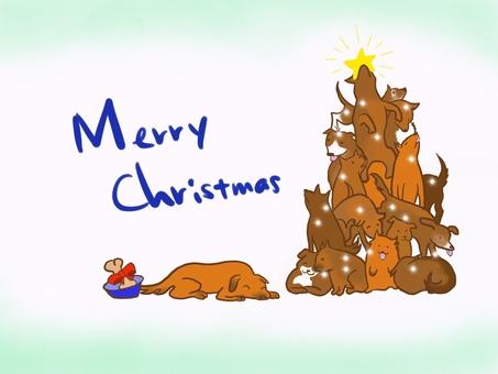 Dog's Christmas tree