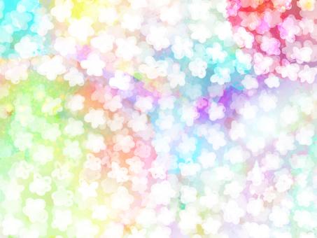 Gentle flower garden rainbow color