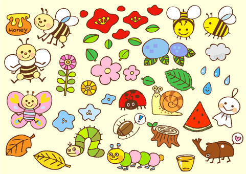 Seasonal insects and plants