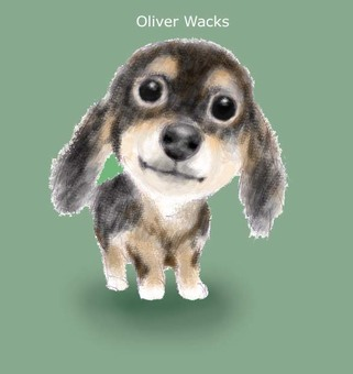 Wax Oliver
