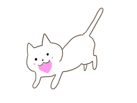 Cat carrying a heart