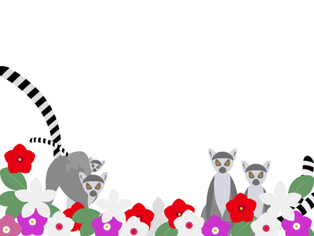 Wow lemurs and flowers