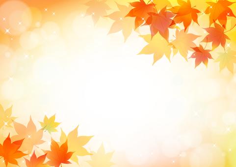Autumn 183