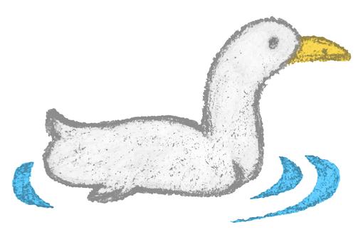 Animal Painting_Duck