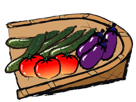 手寫風格夏季蔬菜番茄,黃瓜,茄子