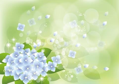 Green & hydrangea 6