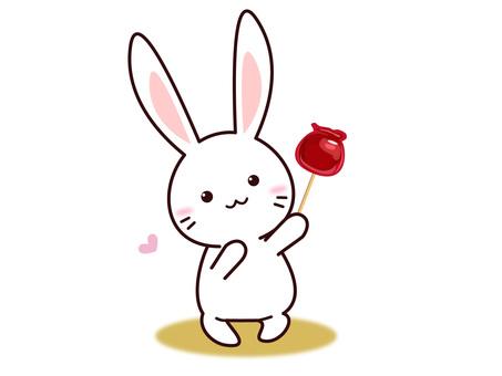 토끼 씨 (사과 사탕)
