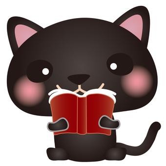 Black cat reading book