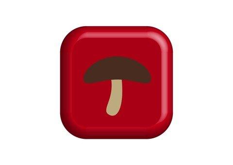 Shitake mushroom button