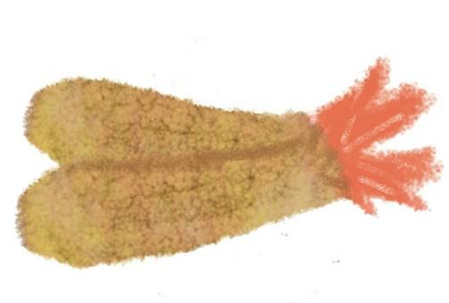 Shrimp fried fry side dish
