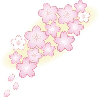 Sakura 018