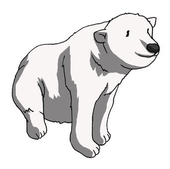 북극곰 님