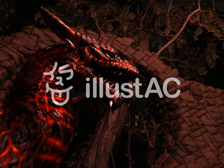 ドラゴンの森のイラスト