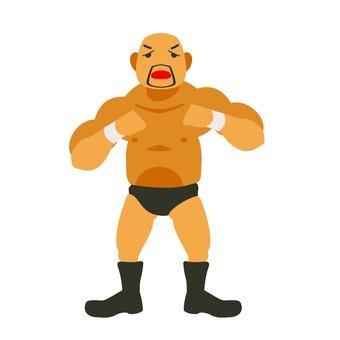Wrestling 6