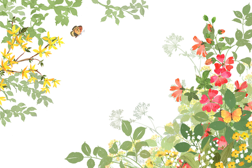 Wildflower frame