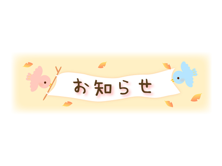 1 small bird announcement frame