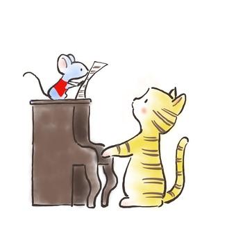 Piano cat 32